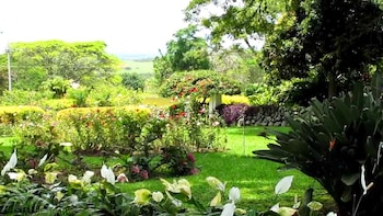 Private Guided Sugar Plantations Tour
