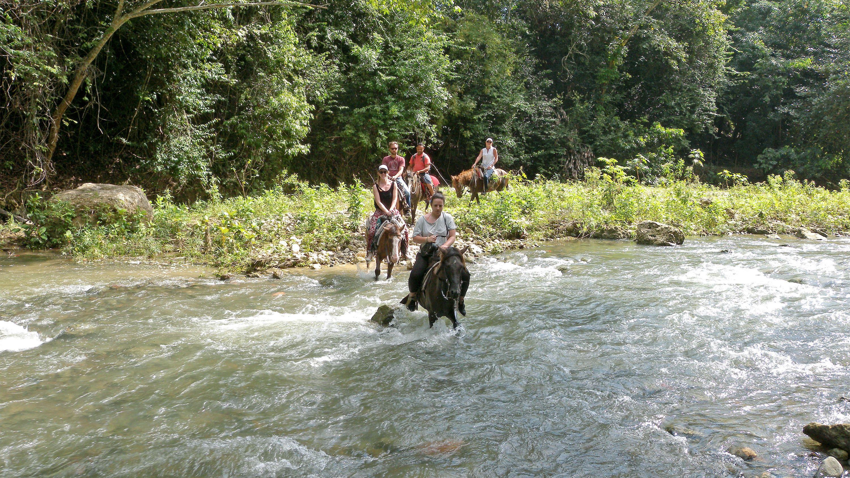 Montana Ranch Horseback Riding Excursion