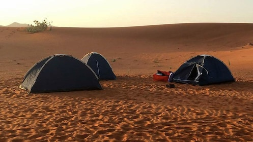 Tents in the desert in Abu Dhabi