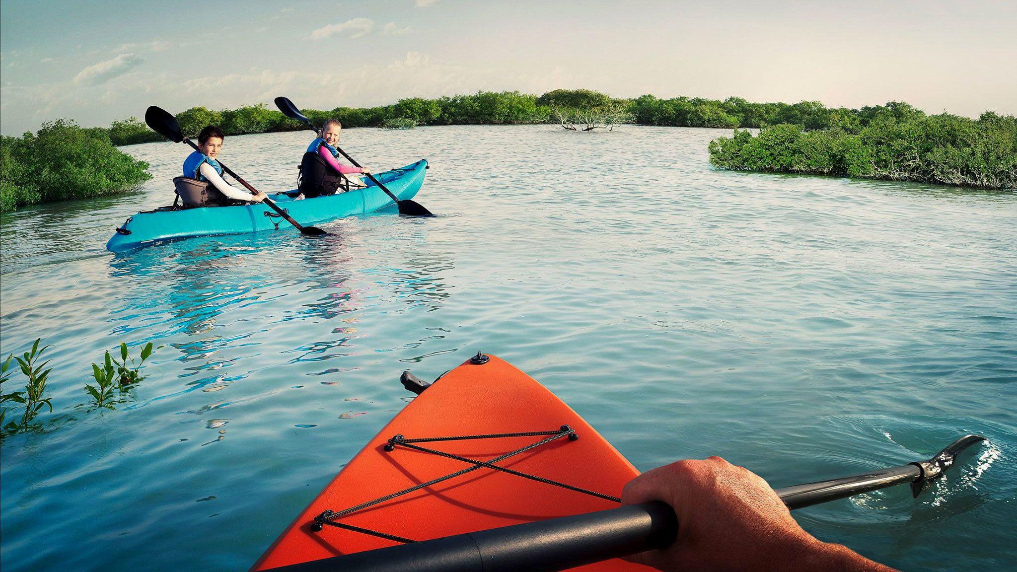Abu Dhabi Mangrove Kayaking Tour