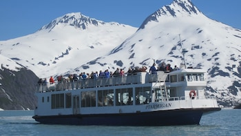 Glacier & Wildlife Explorer Cruise