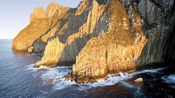 Tasman Island Cruise & Tasmanian Devil Park Tour from Hobart