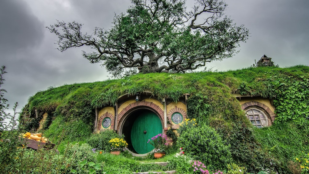 Show item 1 of 5. Hobbit house and gardens in Hobbiton