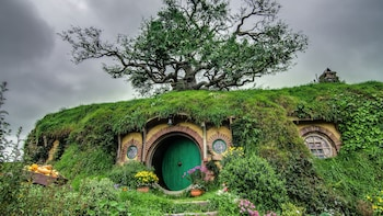 Shore Excursion: Hobbiton & Rotorua Sightseeing Tour