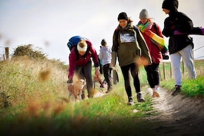 Hiking and Yoga Activity in Brighton