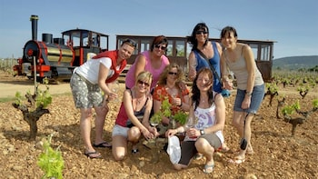 Guided Winery Train Tour with Local Produce, Wine Tasting & Meal