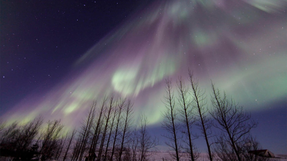 Magnificent view of the Northern Lights