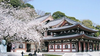 Private Full-Day Customized Tour of Kamakura