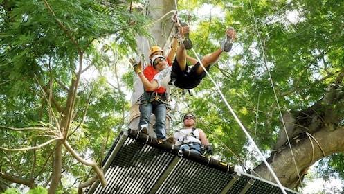 Group ziplining tour in Mazatlan