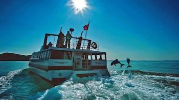 4-Day Sightseeing, Akaroa Harbour & Kaikoura Whale-Watching Tour