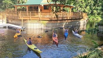 Excursión guiada de remo en kayak por Shingle Creek