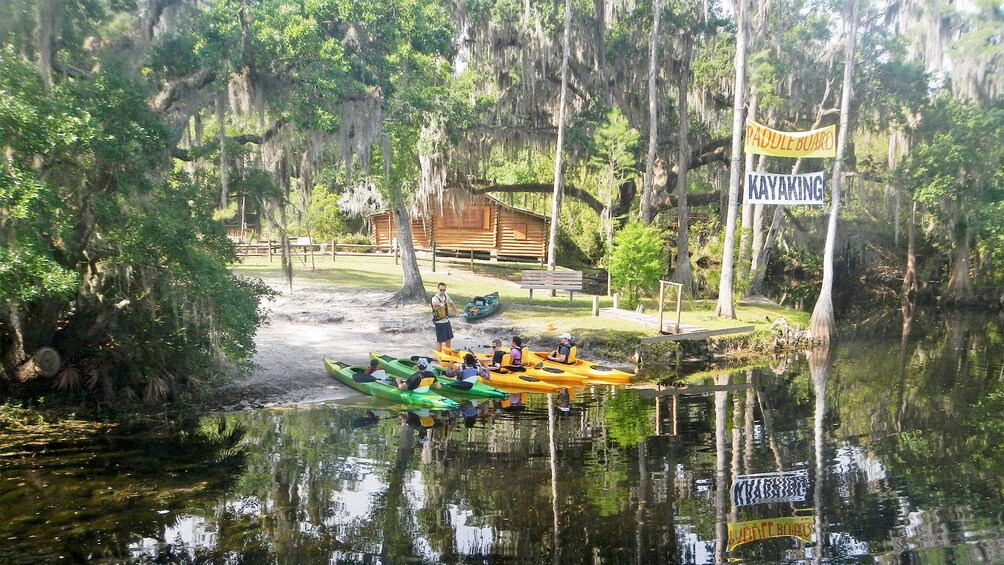 Show item 1 of 5. Orlando Kayak Adventure Tour