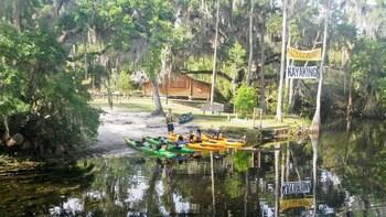 Aventura guiada en kayak por Shingle Creek