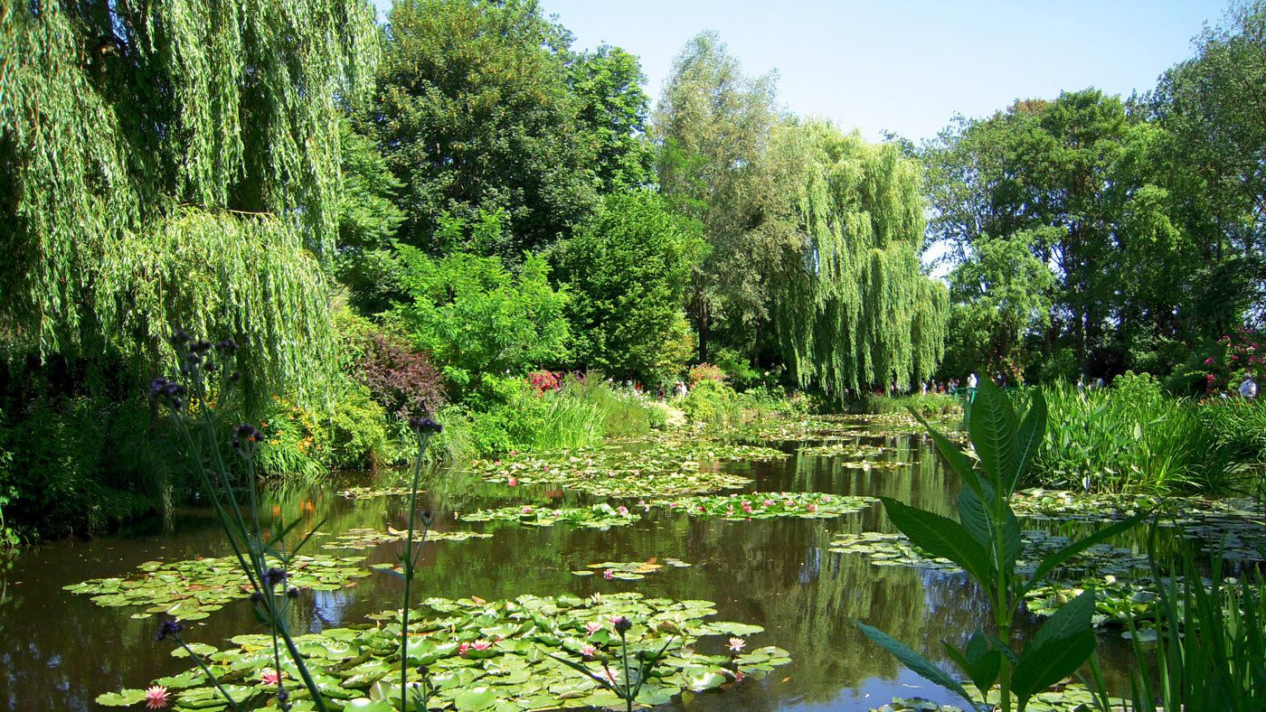 View of greenery found at Giverny