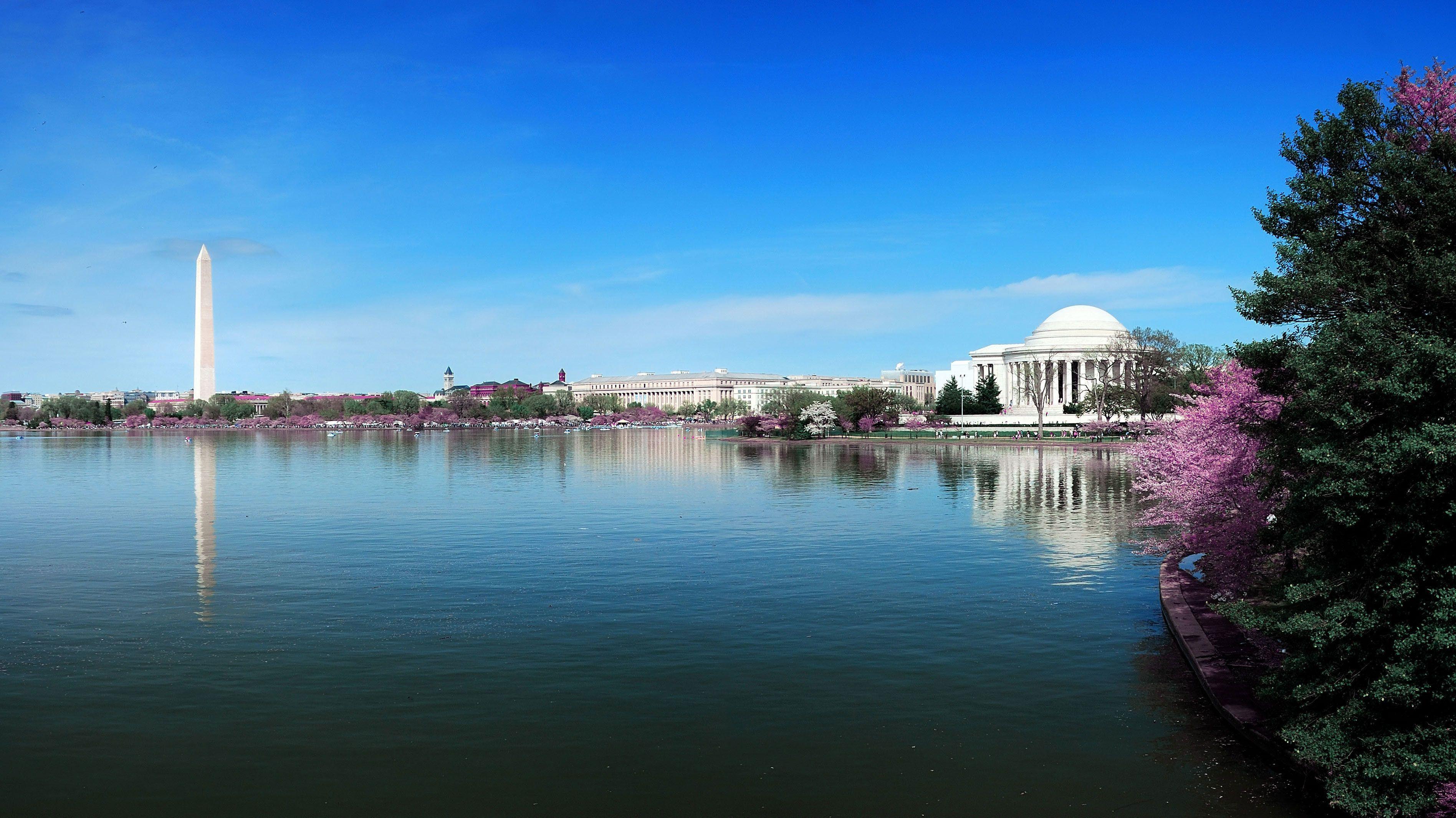 Spirit of Washington DC Brunch Cruise