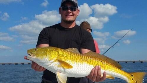 Titusville Bull Redfish.jpg