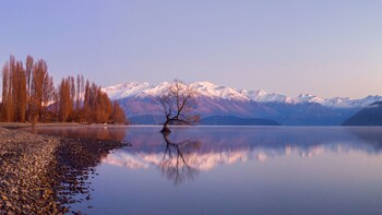 Full-Day Small Group Tour to Historic Arrowtown & Wanaka
