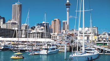 Pre-Cruise Shore Excursion: Self-Guided Auckland Tour with Transfers
