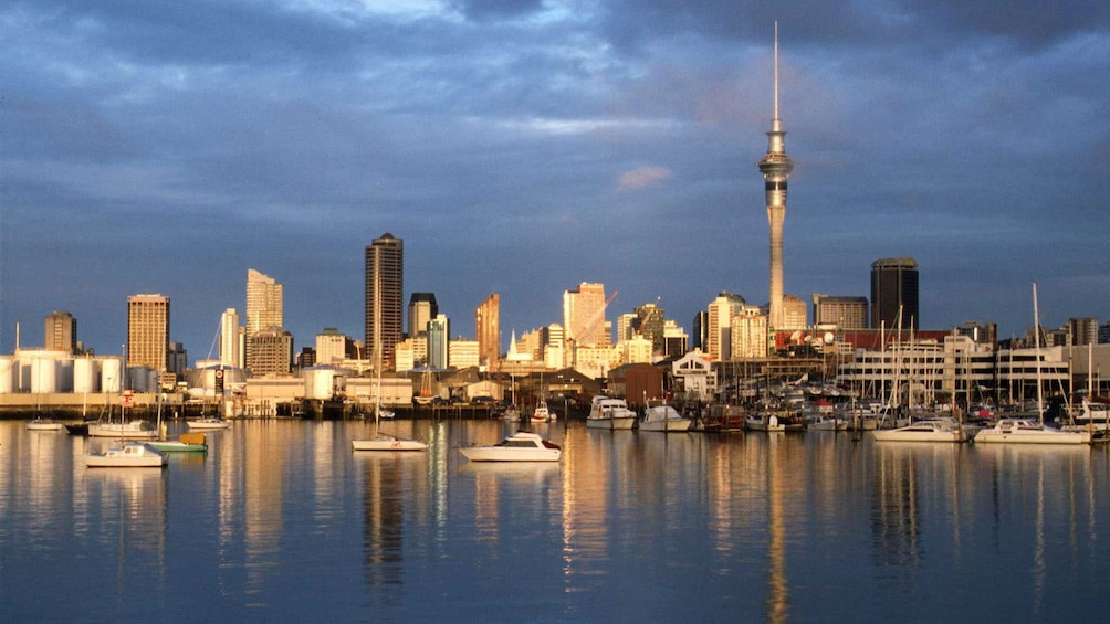 Show item 4 of 5. Cityscape of Auckland with Sky Tower