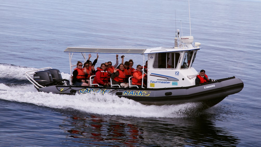 Show item 4 of 4. Whale watching group out on the water