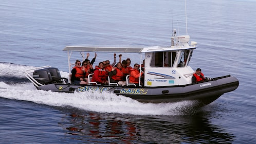 Whale watching group out on the water