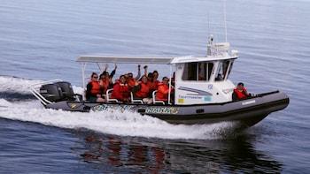 3-Day Whaler Tour: Quebec City, Montmorency Falls, Tadoussac