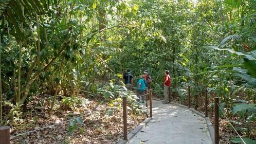 Tourists at Carara National Park in Costa Rica