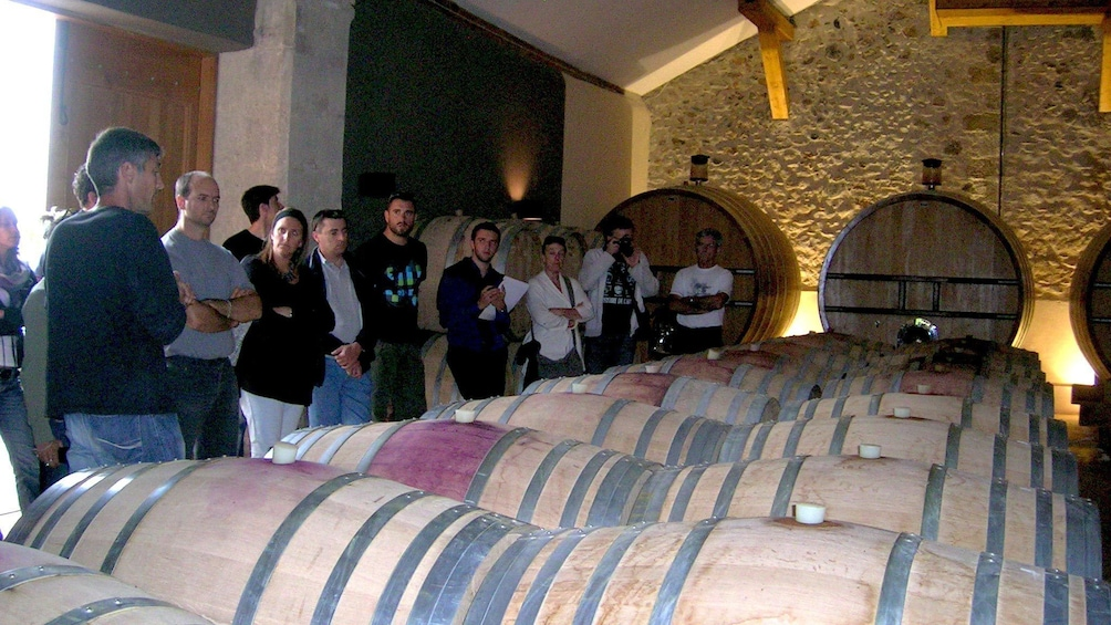 Charger l'élément 3 sur 4. Tourists at a winery looking at wine barrels in Montpellier