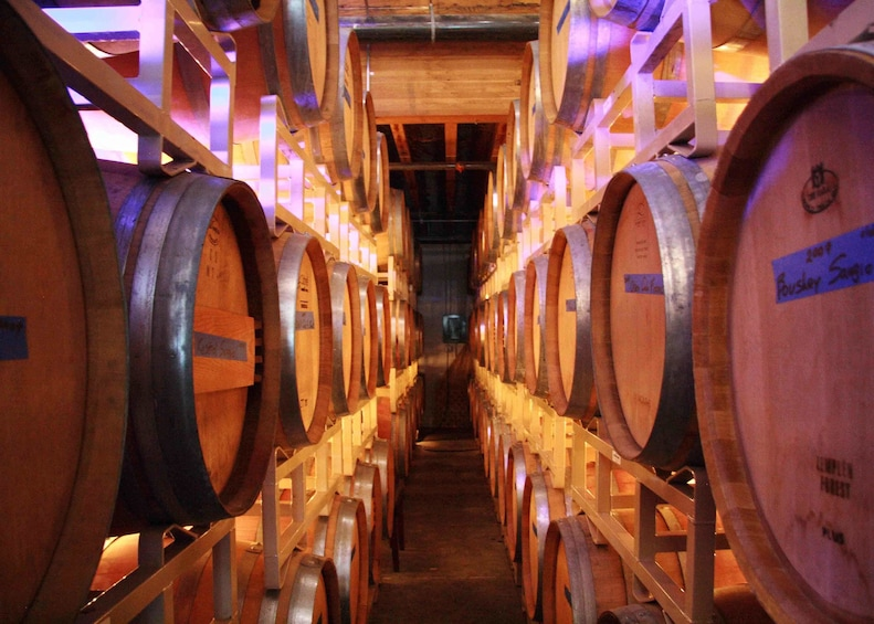 Willamette Valley Wine & Waterfalls Day Tour from Portland