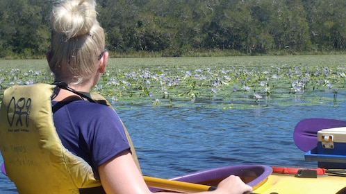 Kayaking woman looking at lily pads in Australia