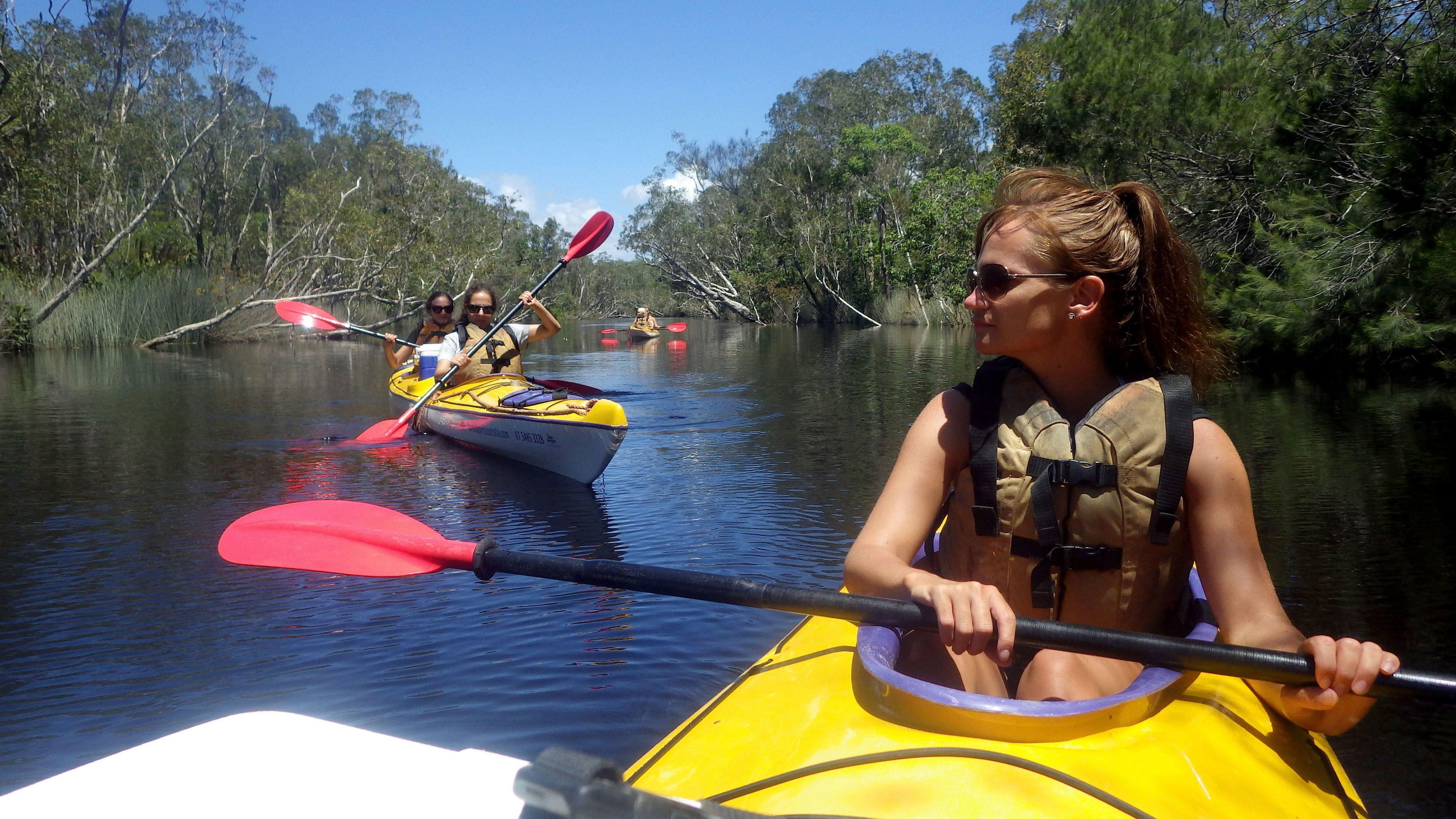 Guided Noosa Everglades Kayaking Tour
