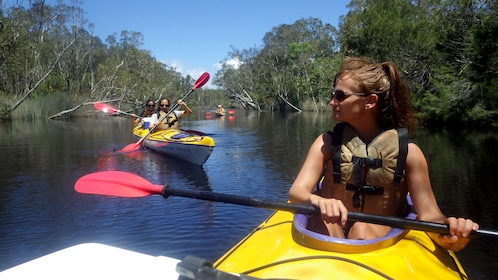 Kayaking group in the everglades in Australia