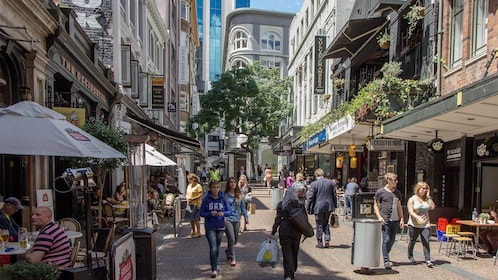 Street view of Auckland on a sunny day