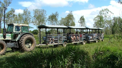 Tractor-pulled tram in the wetlands in Whitsunday