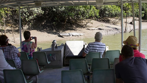 Boating group looking at a crocodile in Whitsunday