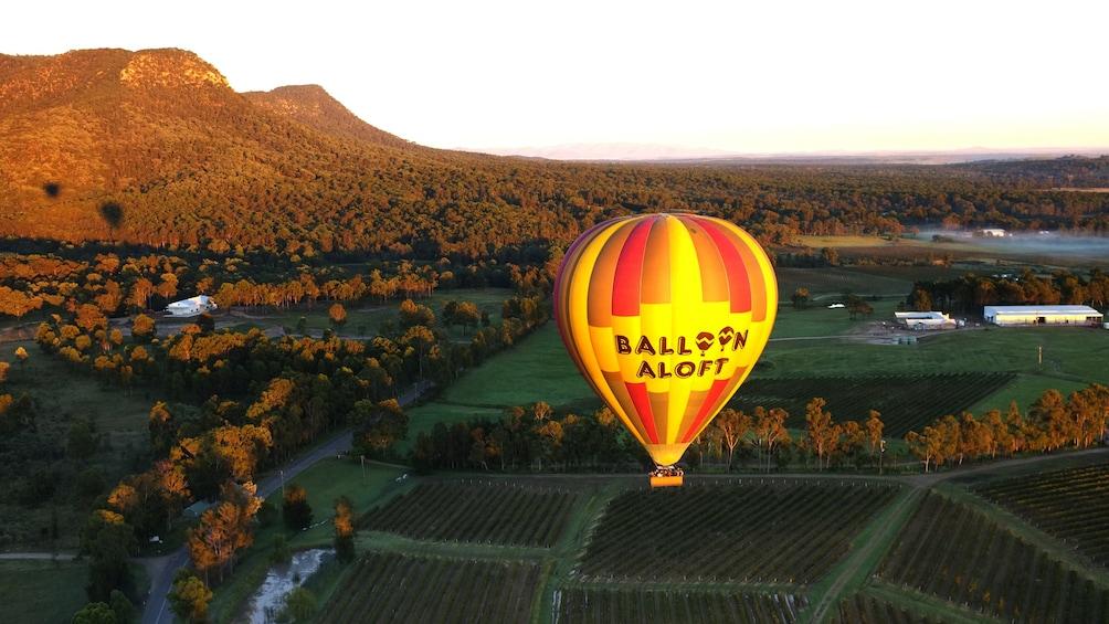 hot air ballon floats above landscape in Hunter Valley