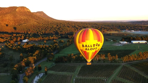 hot air ballon floats above landscape in Hunter Valley
