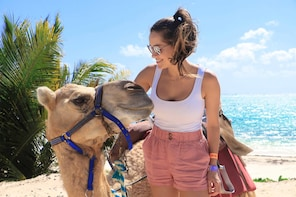 Maroma Beach Camel Safari from Cancun