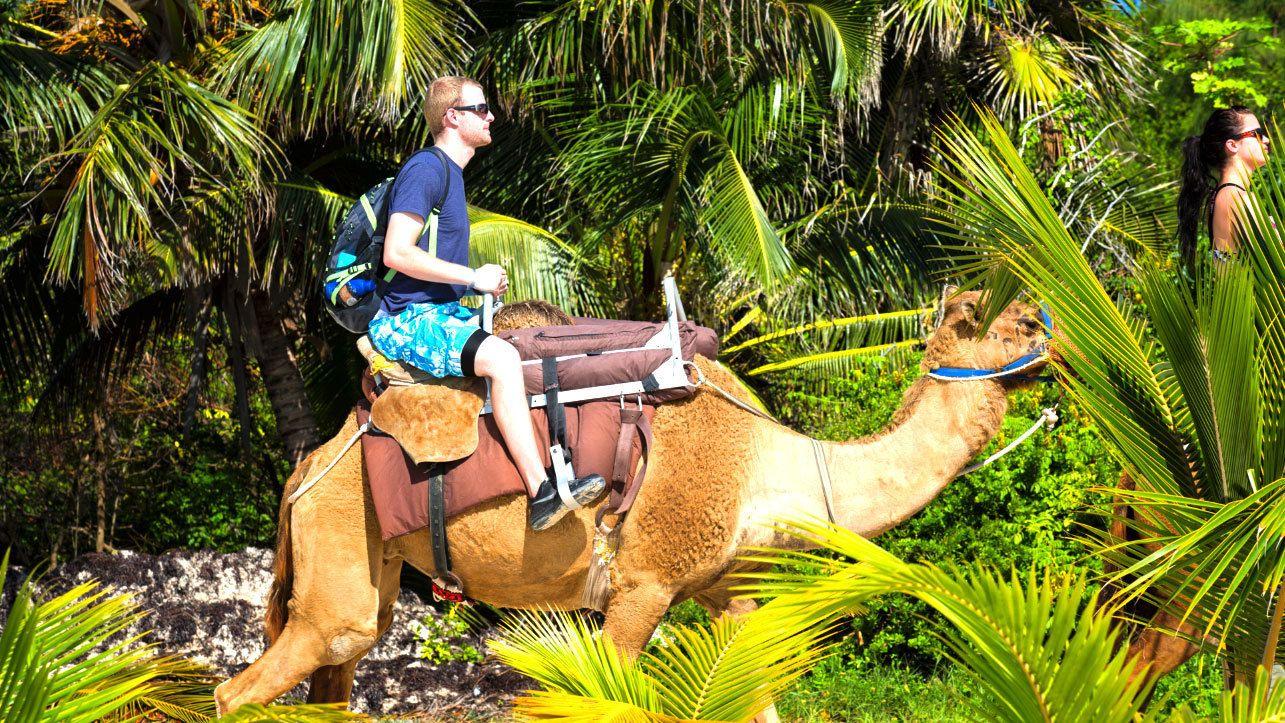 Man on a camel safari tour in Cancun