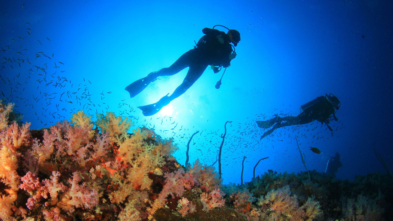 Scuba divers in Gold Coast