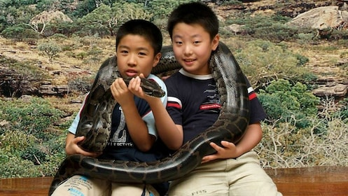 Pair of boys holding a large snake in Brisbane