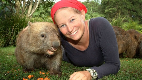 Woman posing with a wombat in Brisbane