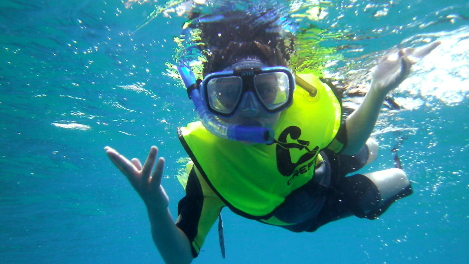 Guided Snorkelling Tour