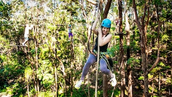 TreeTop Challenge High Ropes Adventure Park Tickets
