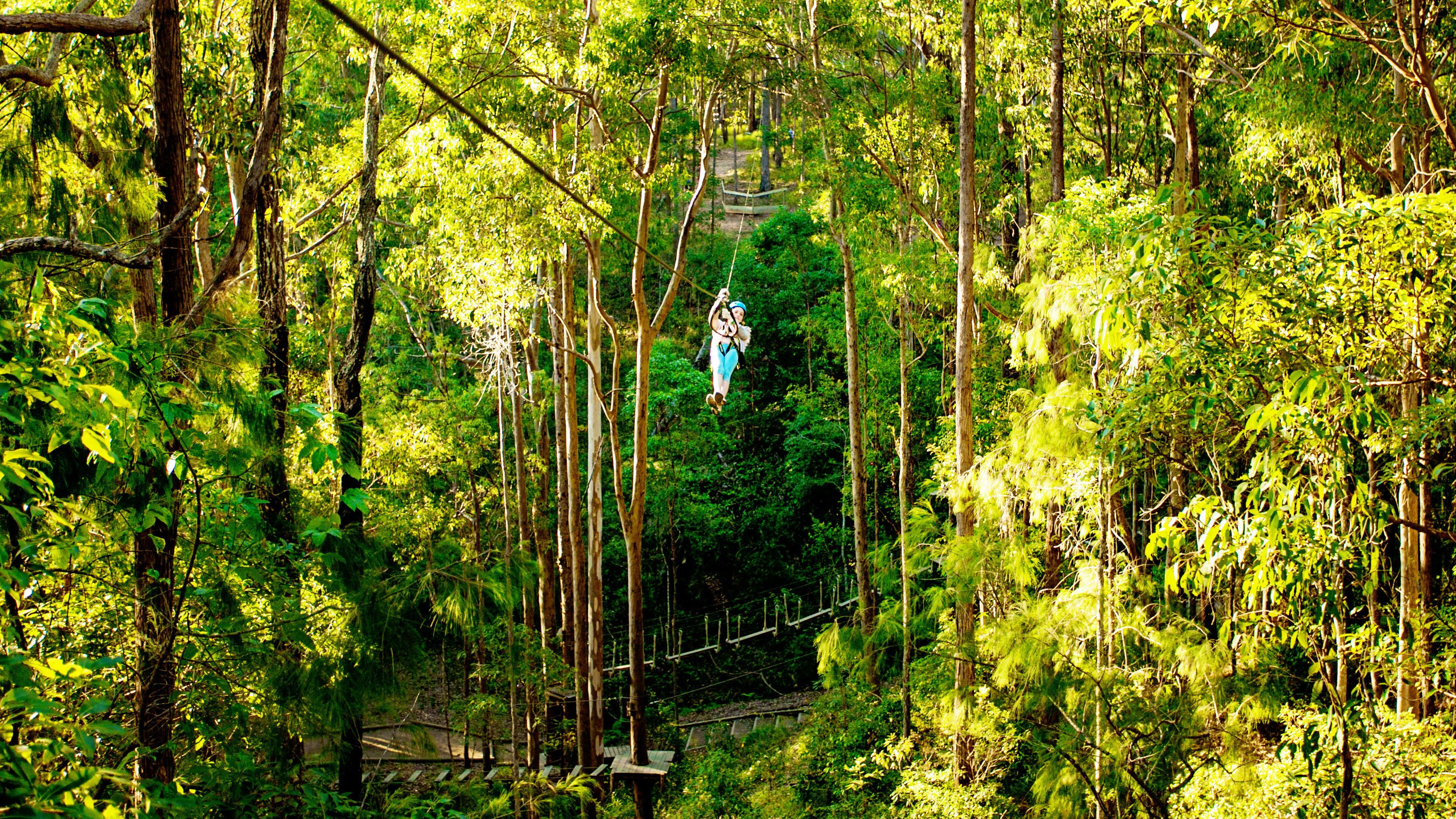 Woman ziplining through the trees in Australia