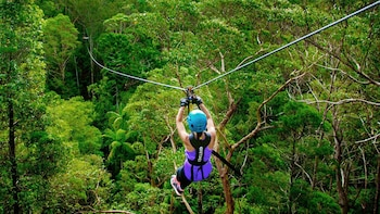 Tickets to TreeTop Challenge Canyon Flyer Zipline Tour