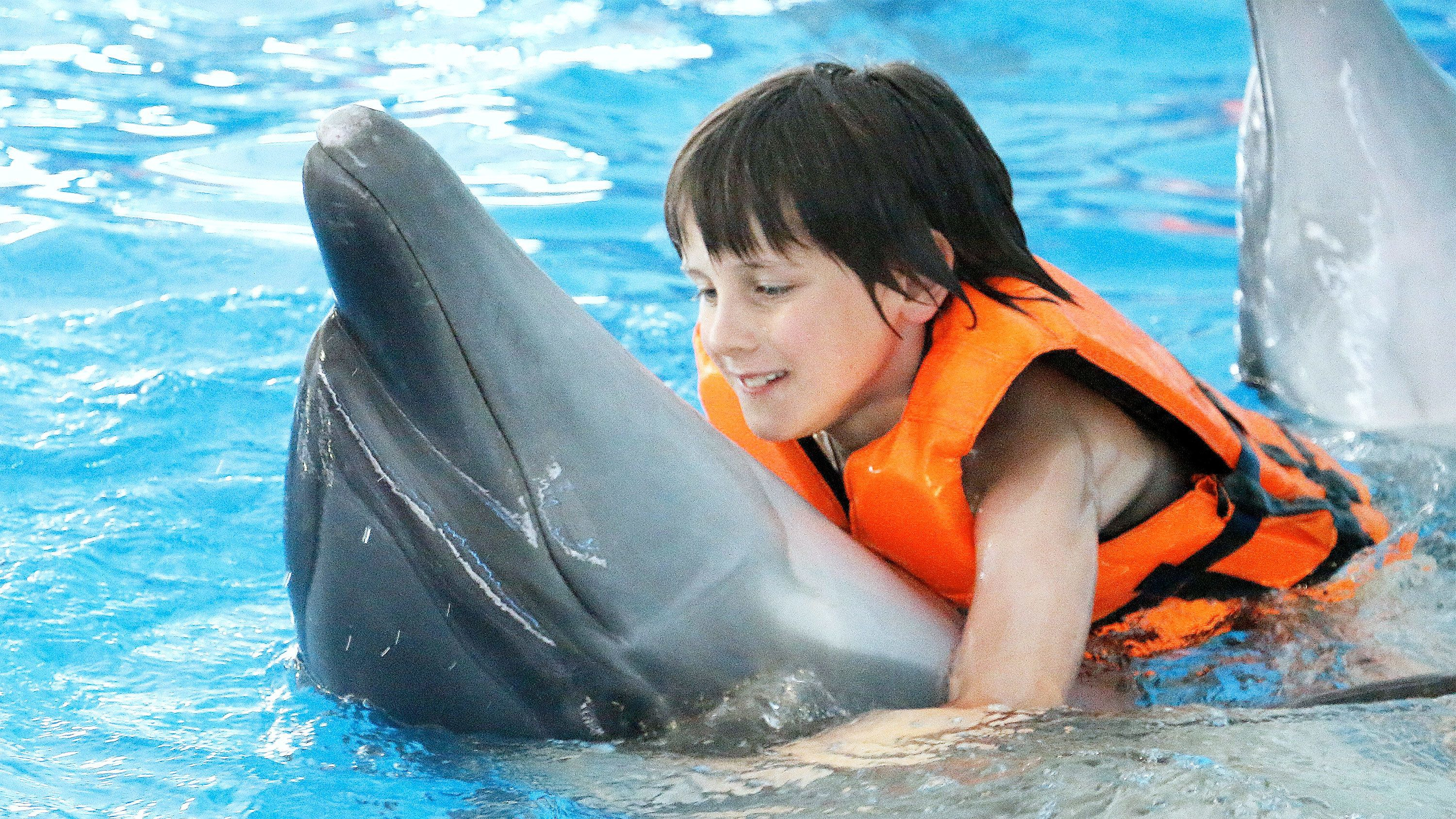 Child swimming with a dolphin in Phuket