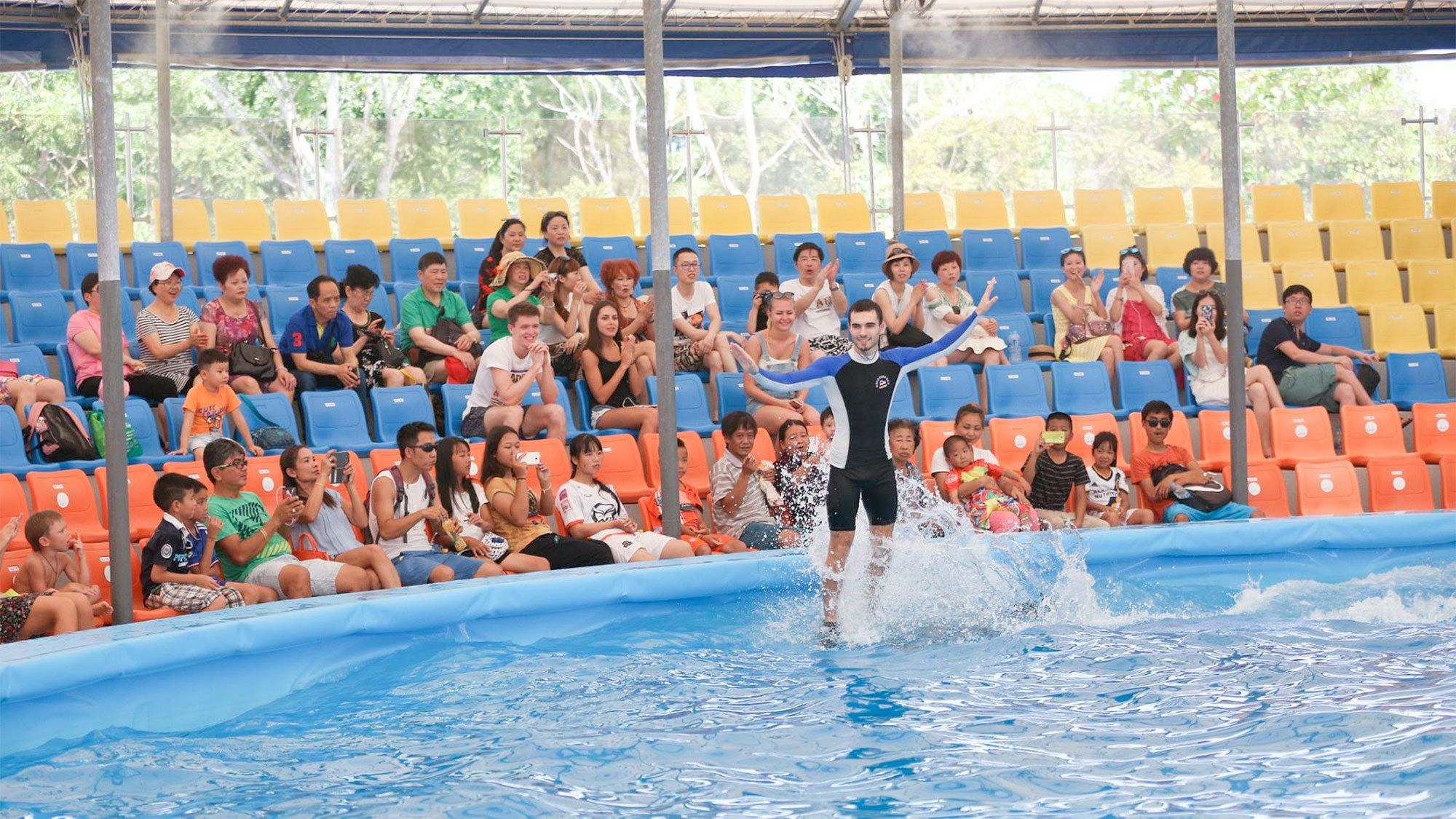 Trainer at the Dolphin Show in Phuket