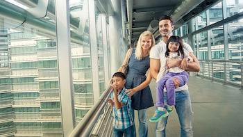 双峰塔和吉隆坡塔的优先入场门票