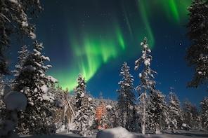 Aurora Borealis Picnic